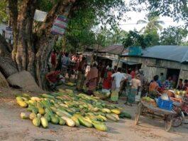 সলঙ্গী গ্রাম ধোপাদহ্ ইউনিয়ন