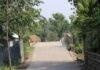 দড়ানীপাড়া গ্রাম বাবুটিপাড়া