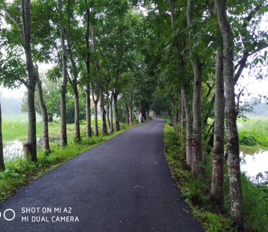 দমদমা গ্রাম হাইতকান্দি ইউনিয়ন