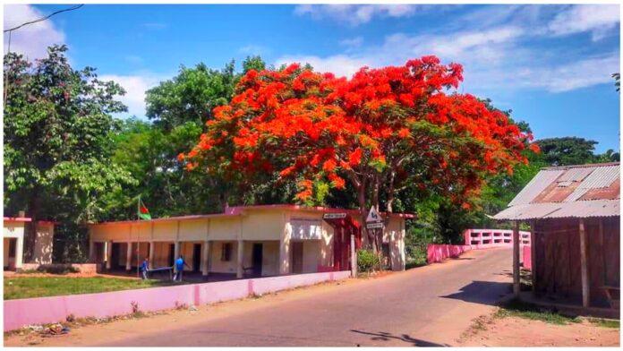 মিরধারপাড়া গ্রাম পশ্চিম গুজরাই উনিয়ন