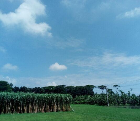 পীরপুর গ্রাম রামদী ইউনিয়ন
