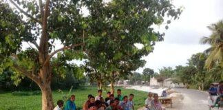 বাউশগারি গ্রাম ধুলাউড়ি ইউনিয়ন