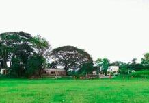 চেচড়া গ্রাম সাতমোড়া ইউনিয়ন